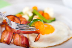 Fried egg with bacon Royalty Free Stock Photos