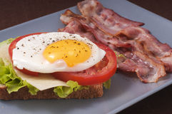 Fried egg and bacon Royalty Free Stock Photo