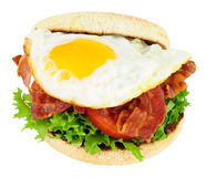 Fried Egg And Bacon English Muffin Sandwich Royalty Free Stock Photos