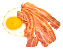 Fried Egg And Bacon Rashers Stock Photography