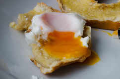 Fried Egg on Bagel - Partly Eaten Stock Photography