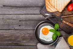 Fried egg with basil on pan royalty free stock photography