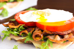 Fried Egg BLT Royalty Free Stock Image