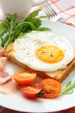 Fried egg for breakfast Stock Photos