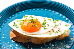 Fried egg on canape and blue plate Stock Photo