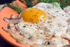 Fried egg with champignons and dill Royalty Free Stock Image