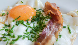 Fried Egg Chives en Bacon Stock Foto's