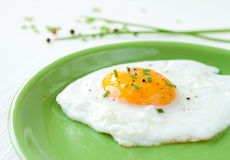 Fried egg with chives on green plate Royalty Free Stock Photo