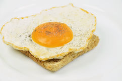 Fried Egg com sal e pimenta no brinde Fotos de Stock Royalty Free