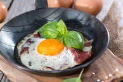 Fried Egg con bacon immagine stock libera da diritti