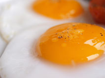 Fried Egg detail Royalty Free Stock Photography