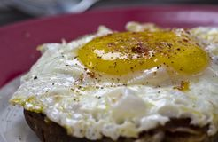 Fried Egg, Dish, Meal, Cuisine royalty free stock photos