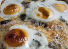 Fried egg. S on an open fire Stock Photo