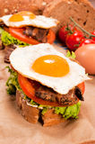 Fried egg sandwich Stock Image