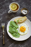Fried egg and fresh spinach on a white plate Royalty Free Stock Image