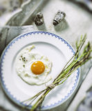 Fried egg and fresh wild asparagus Royalty Free Stock Photo