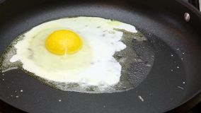 Fried egg in a frying pan, time lapse stock video