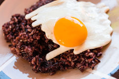 Fried egg with gaba rice on dish Royalty Free Stock Photography