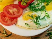 Fried egg with greens, spices, condiments. Fried egg, garnished with slices of juicy tomatoes and green condiments Royalty Free Stock Images