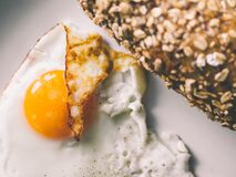 Fried egg and integral bread Royalty Free Stock Image