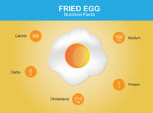 Fried egg nutrition facts, fried egg with information, fried egg vector Royalty Free Stock Images