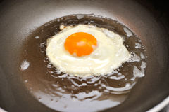 Fried egg on oil Royalty Free Stock Photos