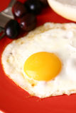 Fried egg with olives royalty free stock photos