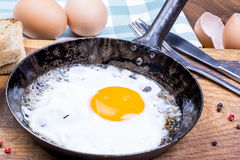 Fried egg on pan. Stock Photos