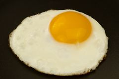 Fried egg in a pan Stock Images