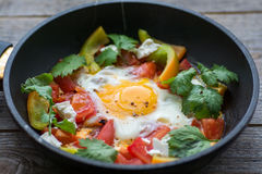 Fried egg in a pan with tomatoes and greens stock images