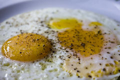 Fried egg with pepper royalty free stock photo