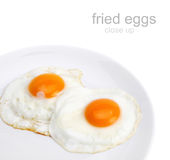 Fried egg on plate Stock Photography