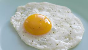 Fried egg on plate. Fried egg with spices on plate. Top view close-up stock footage