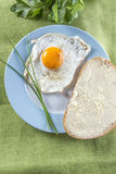 Fried egg on a plate Royalty Free Stock Photography