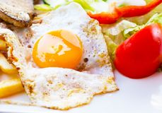 Fried egg with potato fries, grilled steak. Royalty Free Stock Photos