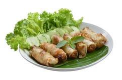 Fried Egg Rolls de la cocina vietnamita Fotos de archivo libres de regalías