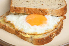 Fried Egg Sandwich Royalty Free Stock Photo
