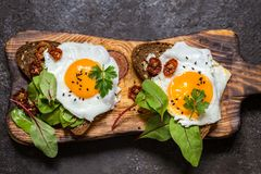Fried egg sandwich with greens on the bread. On dark background Stock Photography