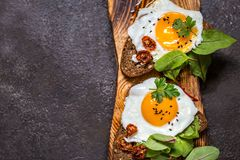 Fried egg sandwich with greens on the bread. On dark background Royalty Free Stock Images