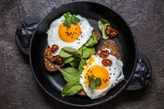 Fried egg sandwich with greens on the bread. On dark background Royalty Free Stock Photos