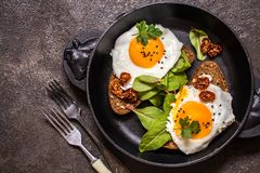 Fried egg sandwich with greens on the bread. On dark background Stock Images