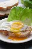 Fried Egg Sandwich. Sliced bread with fried egg. Sea salt and black pepper stock images