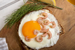 Fried egg with shrimps on protein bread and dill Stock Photography