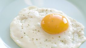 Fried egg on plate. Fried egg with spices are laid out from frying pan on plate. Top view close-up stock video