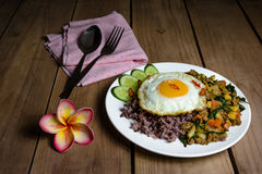 Fried egg with stir-fried minced pork and basil,Thai food Royalty Free Stock Images