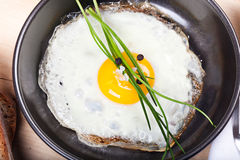 Fried egg sunny side up with parsley, in frying pan Stock Photos