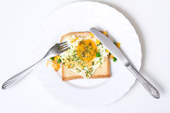 Fried egg on toast bread Royalty Free Stock Image