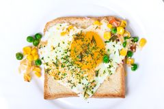 Fried egg on toast bread Stock Photography