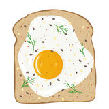 Fried egg on toast bread. Delicious egg sandwich. Vector illustration. Royalty Free Stock Image