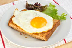fried egg on toast bread with salad Stock Photos